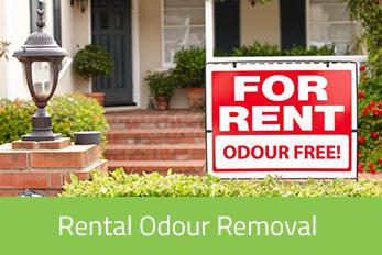 Rental Odour Removal