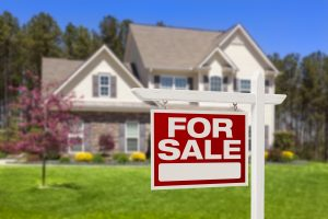 Odour Removal In Homes For Sale